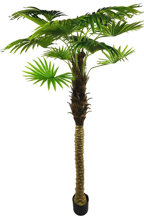 Artificial Fan Palm Tree 190cm Shipping furniture UK
