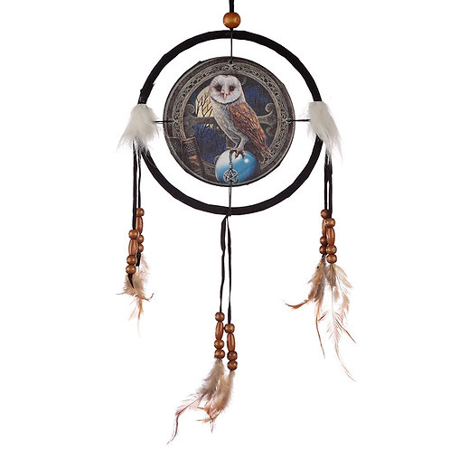 Decorative Magical Barn Owl 16cm Dreamcatcher Novelty Gift