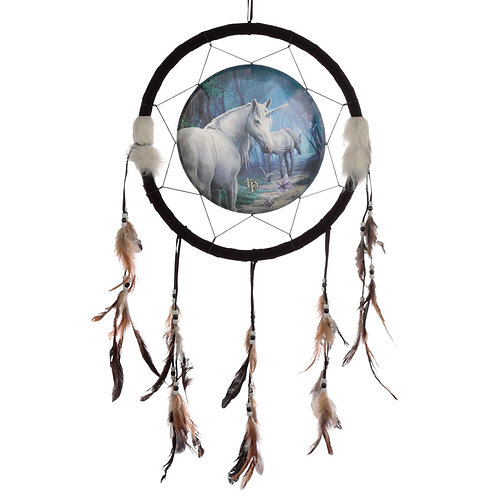 Decorative Lisa Parker The Journey Home 33cm Dreamcatcher Novelty Gift