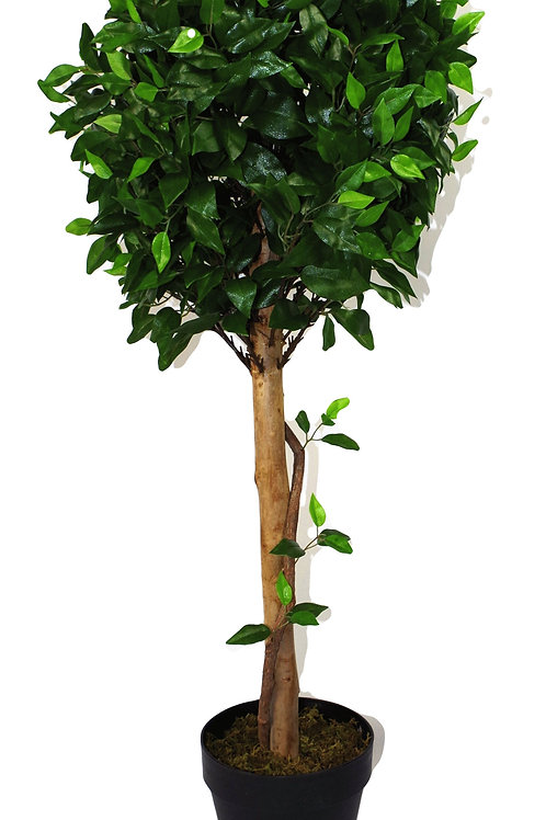 Artificial X-Large 105cm Ficus Ball Tree Shipping furniture UK