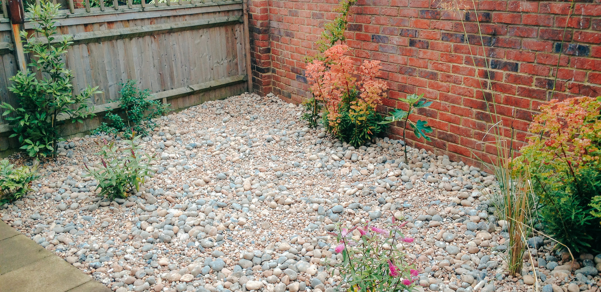 gravel and pebble garden with paving and fence panel