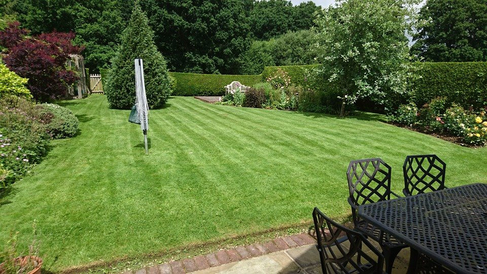 large back garden with neatly mown lawn surrounded with hedges, bushes and trees, with iron garden furniture to foreground