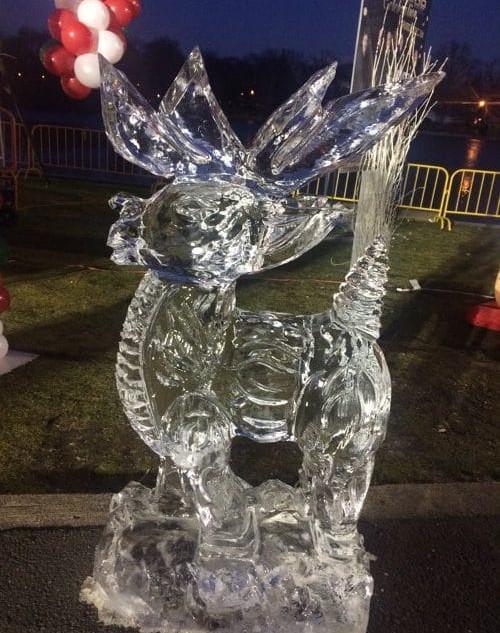 ice-sculpture (29).jpg