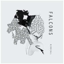 Falcons - Birdcall