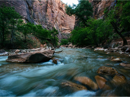 Let's Go Down Into the River: my metaphor for coaching