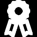 ribbon icon .png