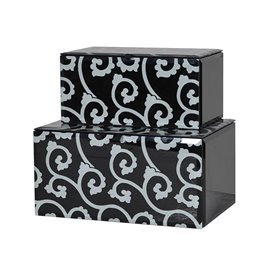 Black & White Glass Box