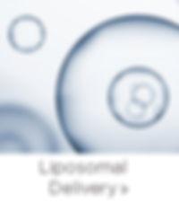 LiposomalDelivery_Tech.jpg