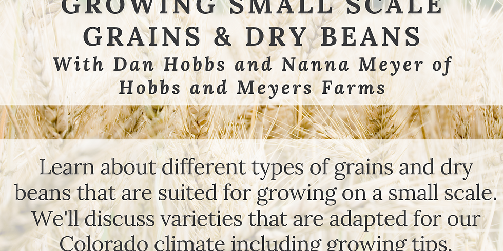 Educational Workshop: Growing Small Scale Grains & Dry Beans