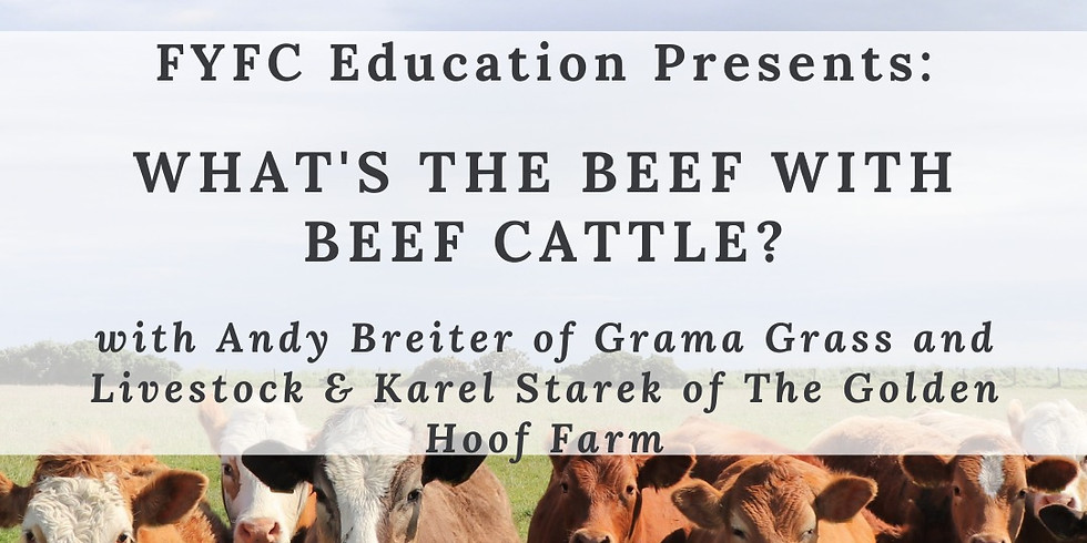 Education Workshop: What's the Beef with Beef Cattle?