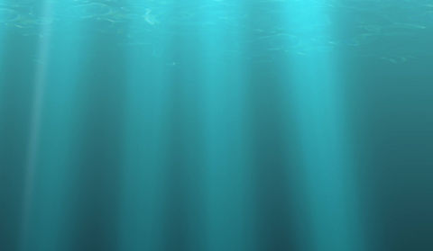 Discover Scuba Diving Martinique