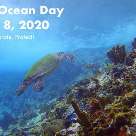 Vert dans la tête, Responsable dans les palmes pour le World Ocean Day !