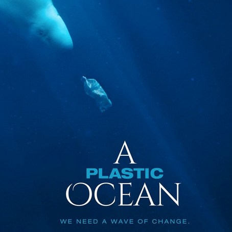 A Plastic Ocean - 4 Years on ...