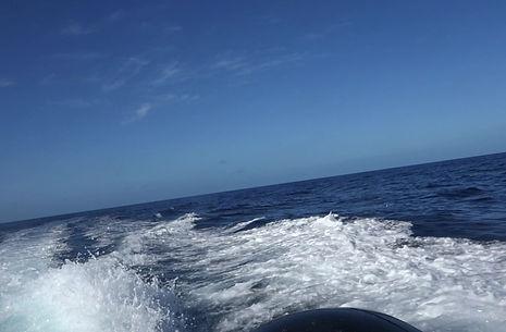Reef diving Martinique