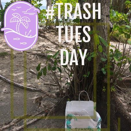 #TrashTuesday - taking care of paradise