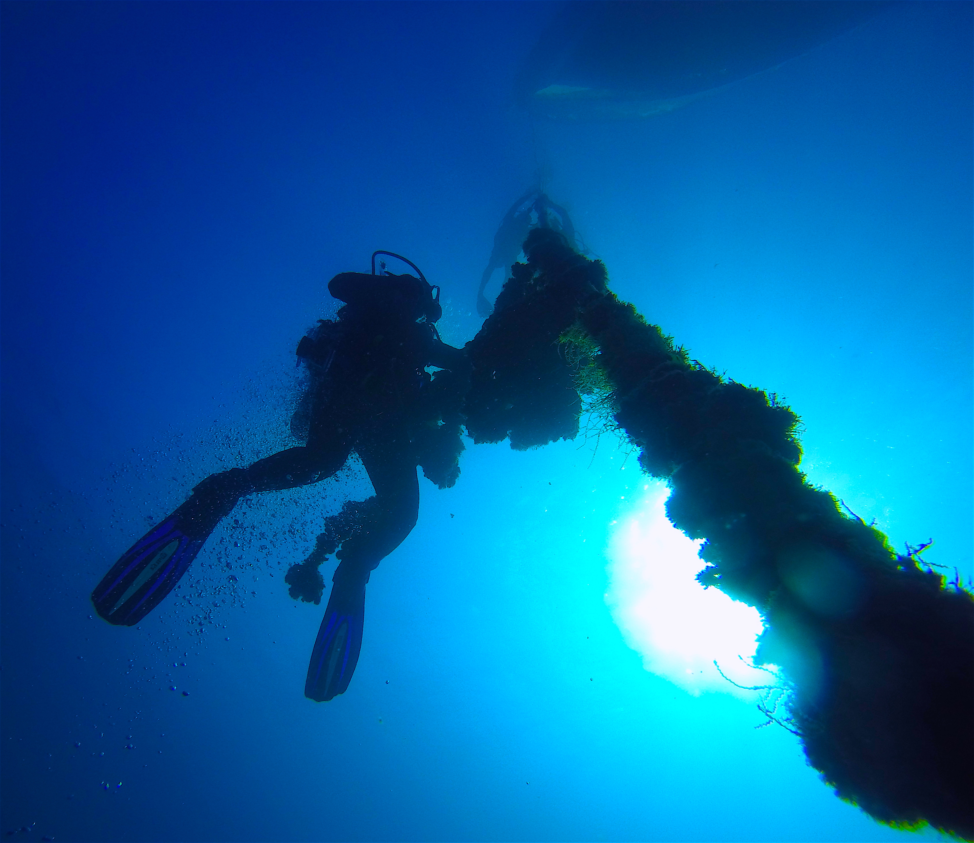 The Nahoon Wreck Dive, Martinique