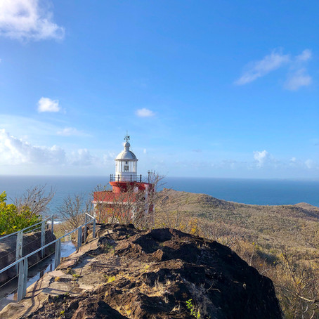 Martinique Not Just Diving - Caravelle Peninsula Trek