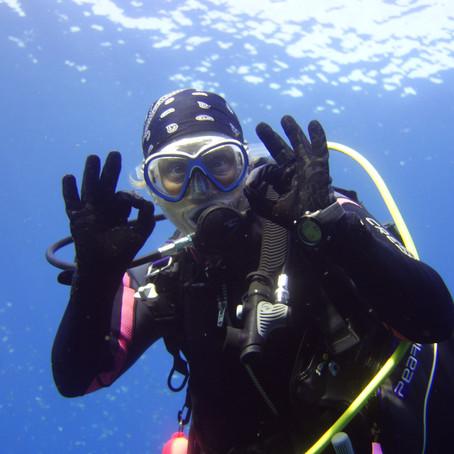 Newsletter #1 - Until we dive again!