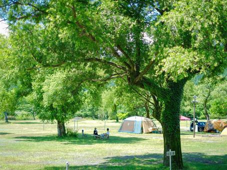 久々のキャンプ
