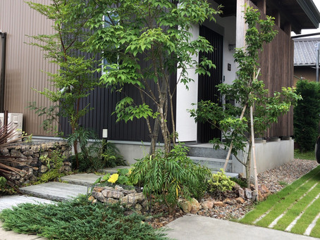 緑のガーデニング/心地よい 玄関アプローチ