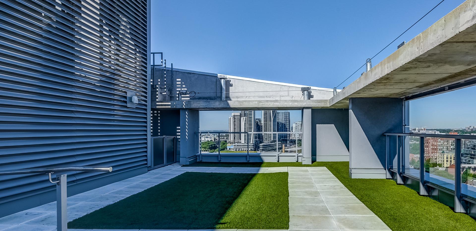 Off-leash rooftop dog area.jpg