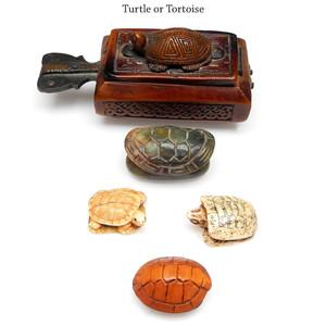 Turtle or Tortoise