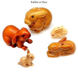 Rabbit or Hare