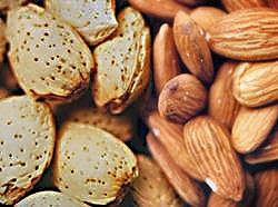 アーモンドのカロリーと栄養素と筋トレ|バルクアップ・ダイエットでの筋肉との関係