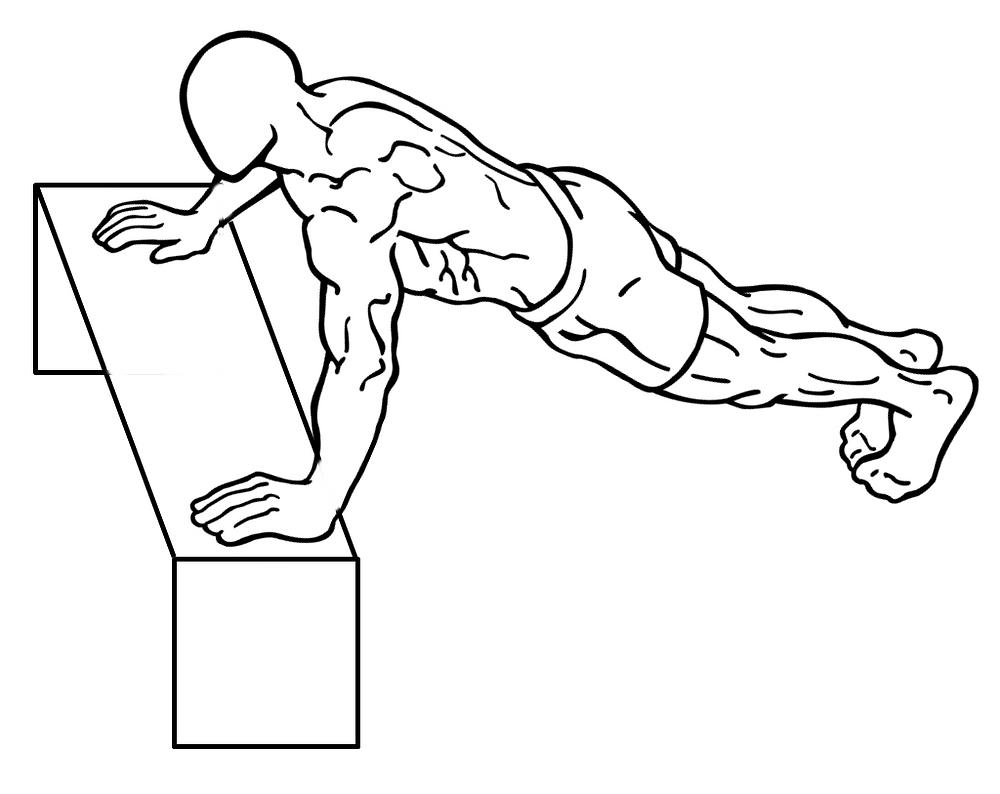 種類 腕立て 腕立て伏せの種類とその効果!10種類の腕立て伏せメニューを解説│アラフォーサラリーマンの雑記ブログ