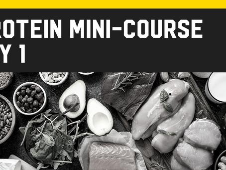 Protein Mini-Course [Day 1]
