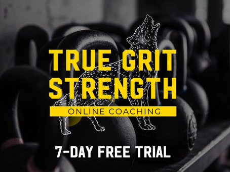 Try Out One Week Of Free Online Training!