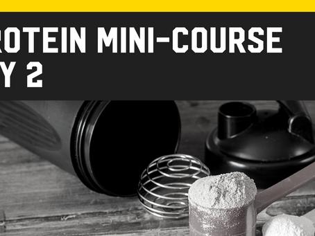 Protein Mini-Course [Day 2]