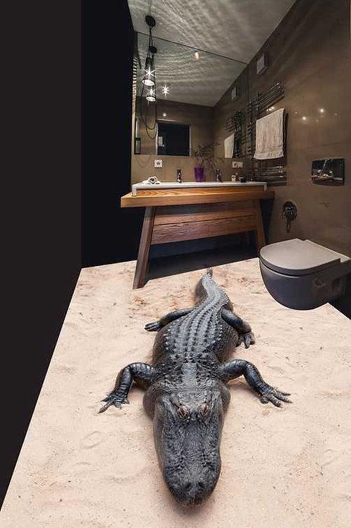 Krokodil (Belag)