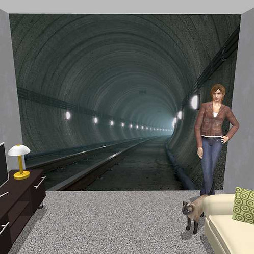3D Wand Tunnel (Belag)