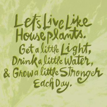 House_Plants copy.jpg