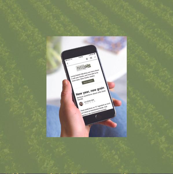 YDS Website 2021_Peeled-39.jpg