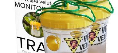 The Vespa velutina monitoring trap by PCP