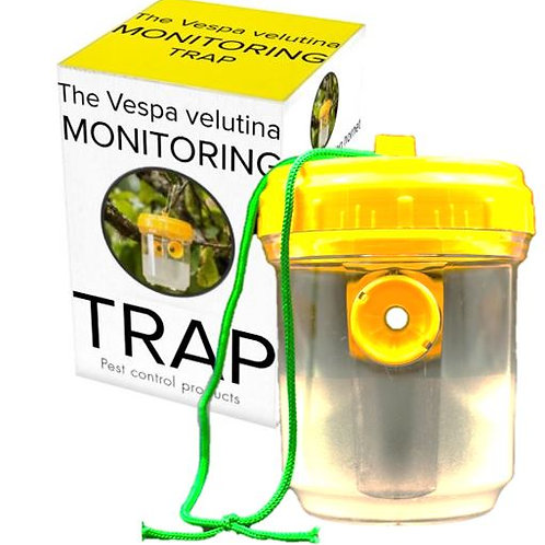 2 x Vespa velutina Asian hornet monitoring trap