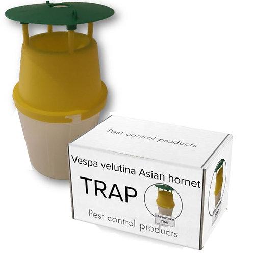 velutina piège à phéromone frelon asiatique