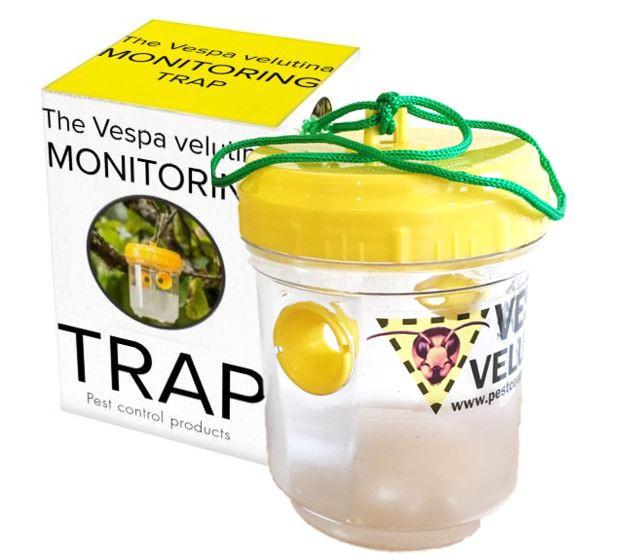 The Vespa velutina monitoring trap by PC