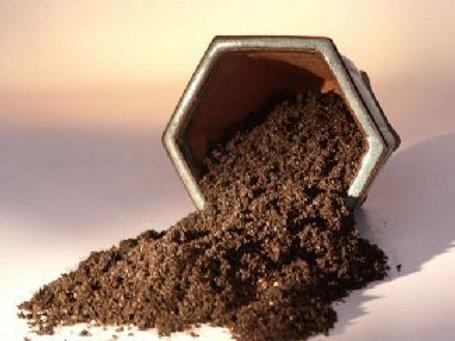 Bonsai Conifer Soil Mix - 2 lbs. (1 Qt.)