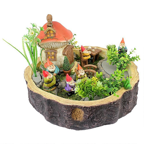 Gnome Miniature Garden