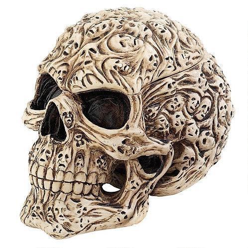 Skull of Lost Souls Box