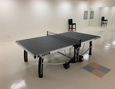 ping pong table.jpg