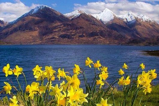 Springtime in the Highlands