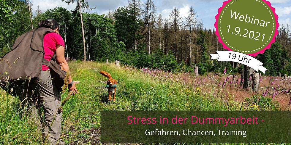 Webinar: Stress in der Dummyarbeit