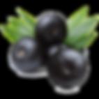 açaí-berry.png