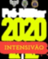 INFOS_INTENSIVAO.png