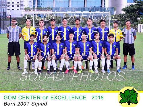 2001 OFFICIAL SQUAD PHOTO 2018