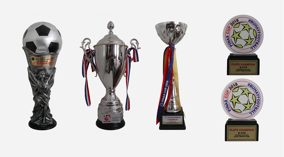 HONOURS 2018 TROPHIES.png